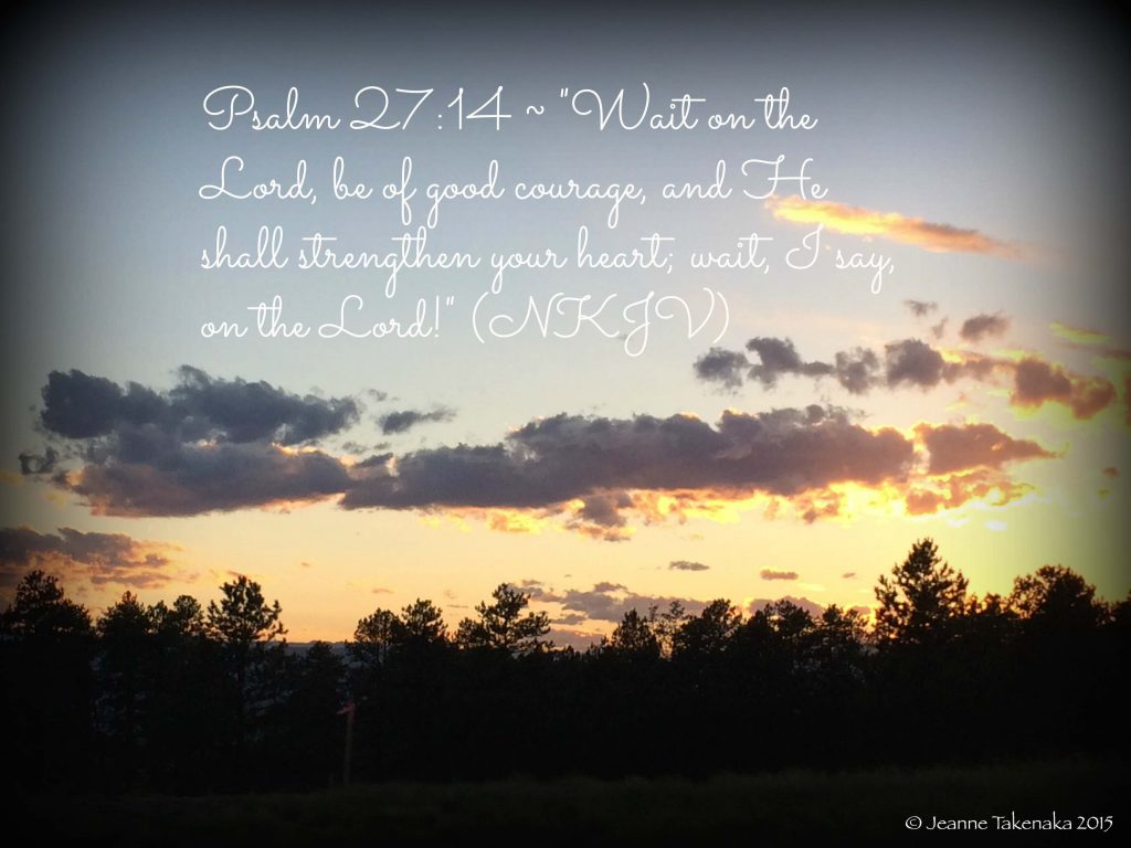 """A meme that says, """"Pssalm 27:14: 'Wait on the Lord, be of good courage, and He shall strengthen your heart; wait, I say, on the Lord!' (NKJV)"""" on a backdrop of a sunset and silhouetted trees, a reminder that faith and trust in God help during waiting times"""