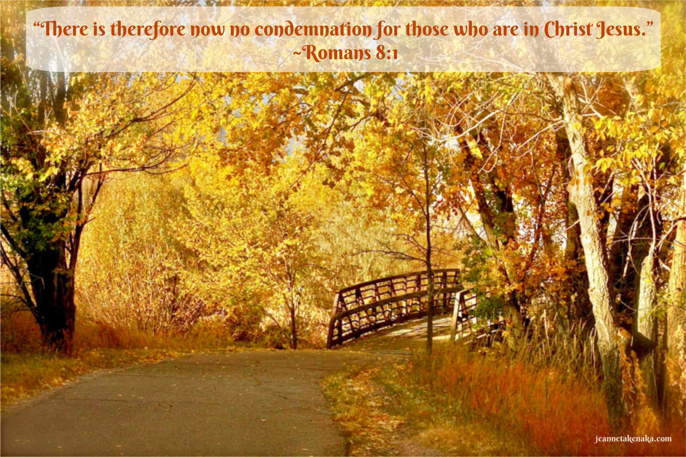 """A meme with the words, """"There is therefor now no condemnation for those who are in Christ Jesus."""" ~Romans 8:1 on a backdrop of fall foliage surrounding a bridge"""