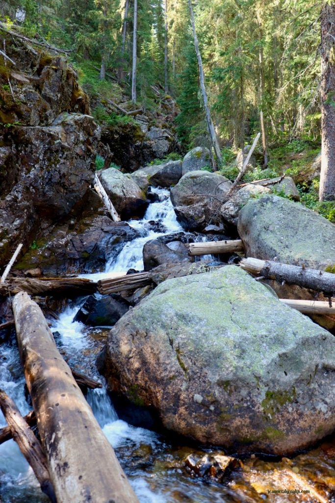 A waterfall cluttered by logs . . . a symbol of the need to declutter our hearts as this waterfall needs things branches out of its way
