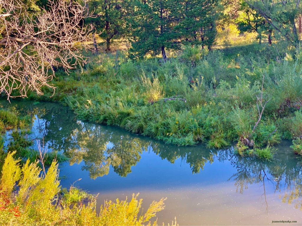 A still stream reflecting trees and sky . . . an image of how our heart can be when we do the work of decluttering