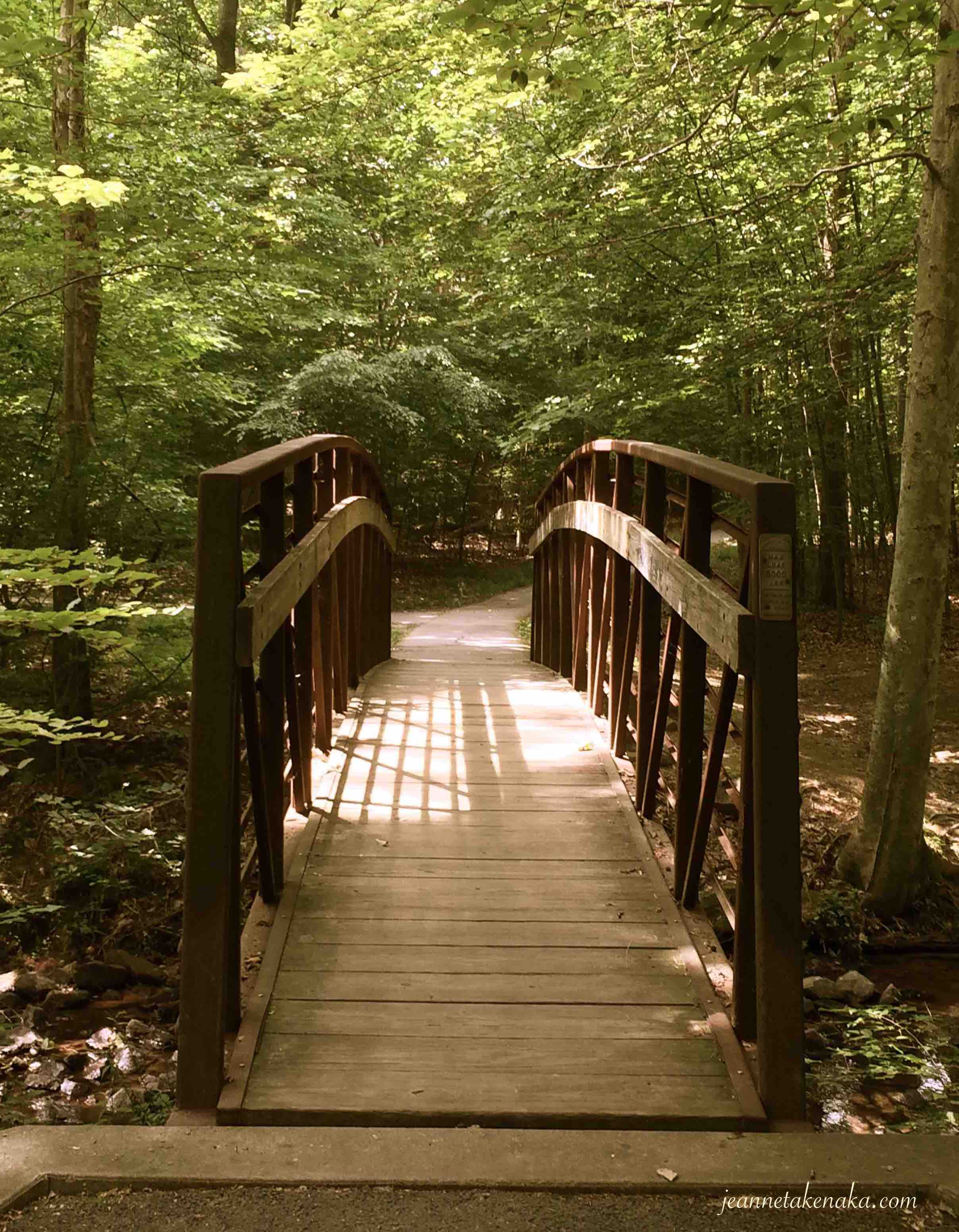 A wooden bridge in a forest, an invitation to walk with God beyond disappointment