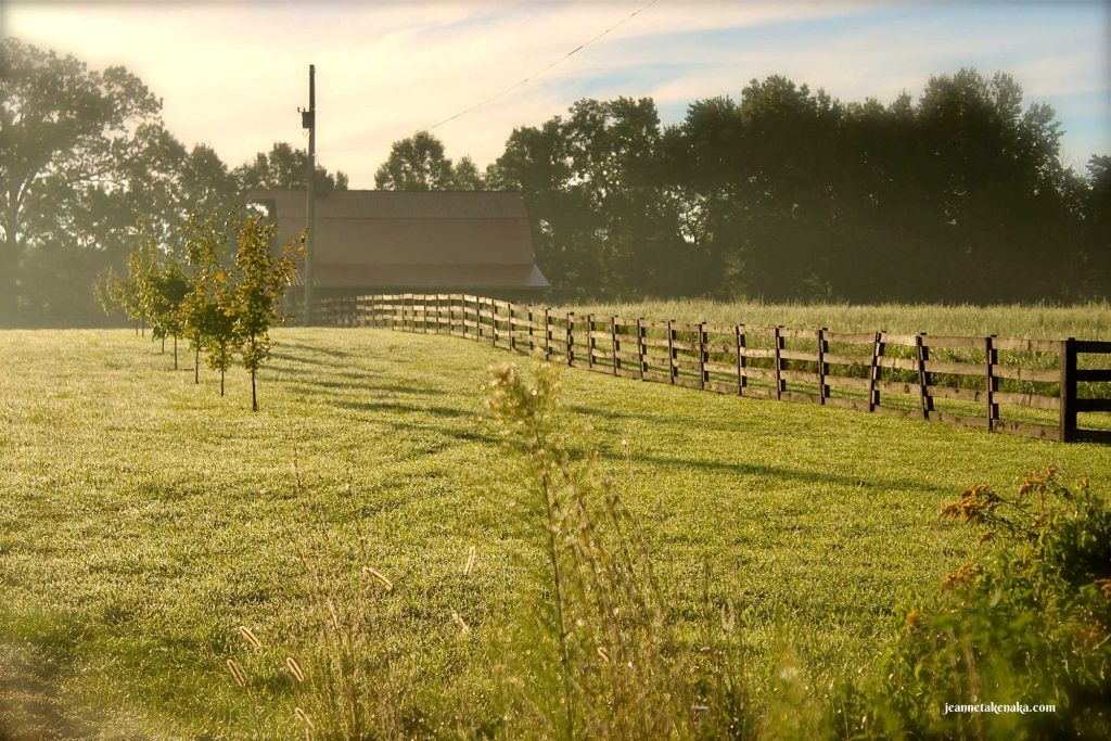 Image of a wooden fence in a barn yard...symbolic of the choices we make about busyness and rest