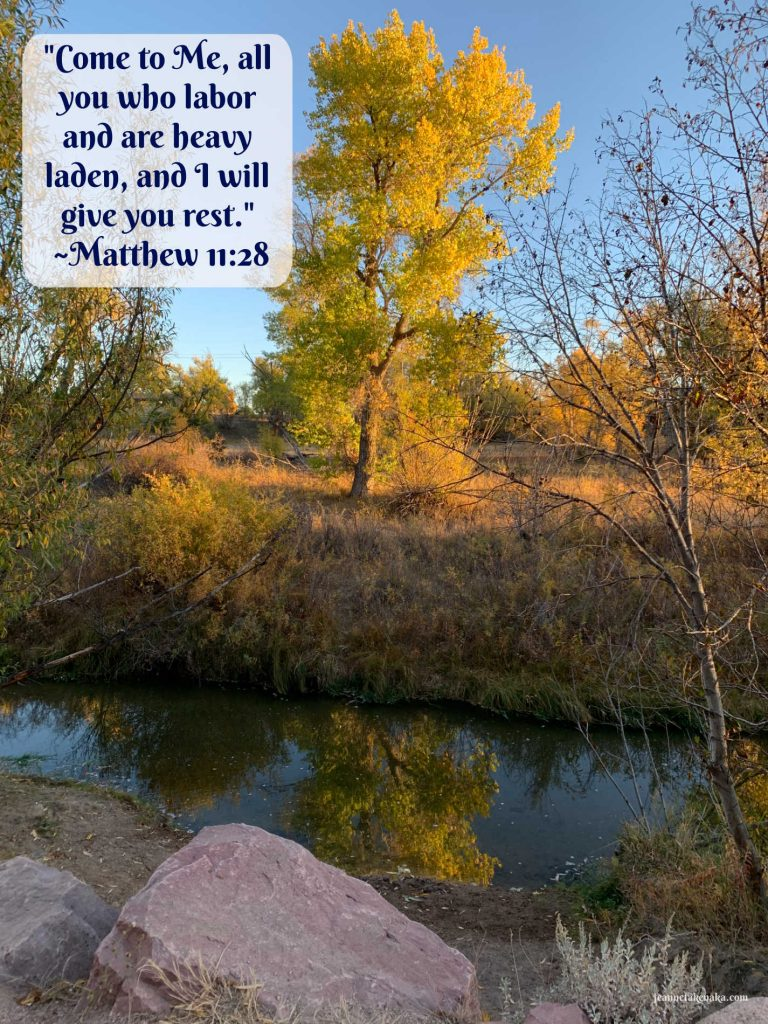 """A meme with the words: """"Come to Me all you who labor and are heavy laden, and I will give you rest."""" Matthew 11: 28 on a backdrop of a tree reflecting in still waters. A reminder that we need rest and there is One who offers it to us."""