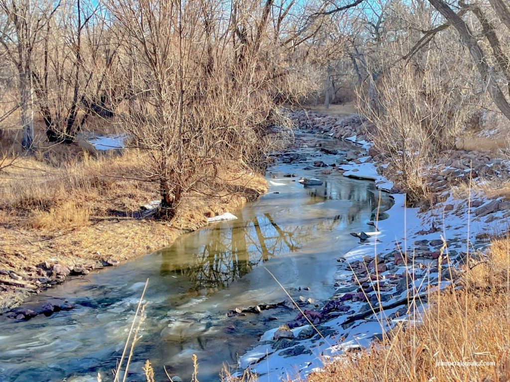 A semi-frozen river running between bare tree-lined banks