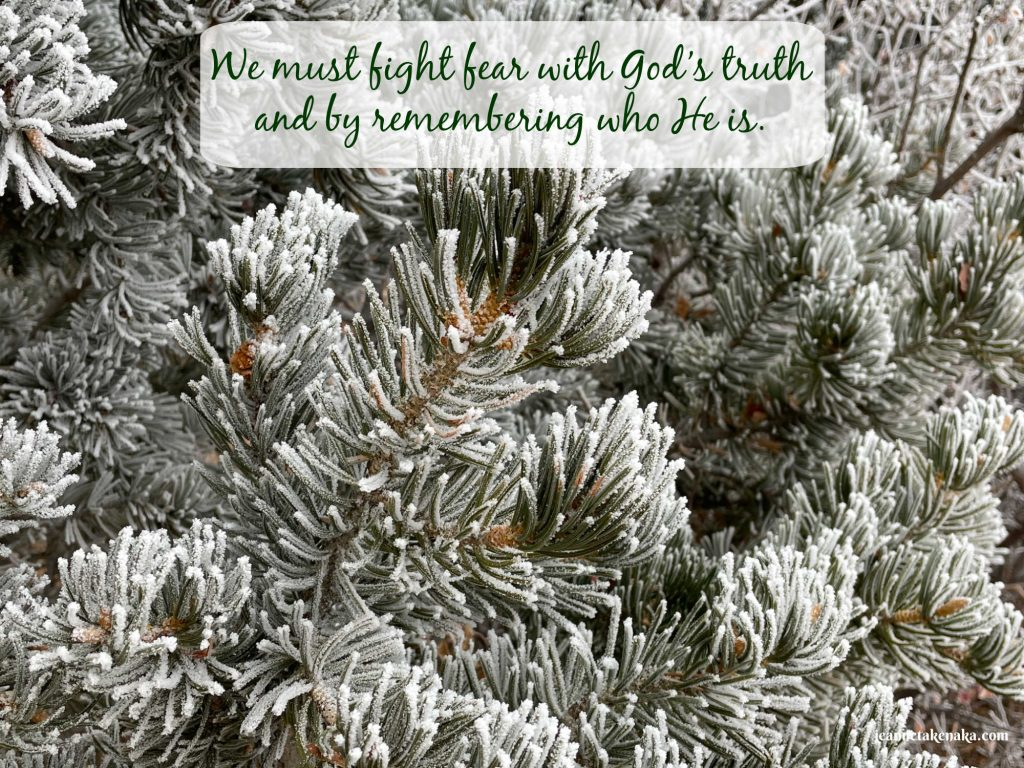 """Meme that says, """"We must fight fear with God's true and by remembering who He is."""" on a backdrop of hoarfrost-covered pine needles"""