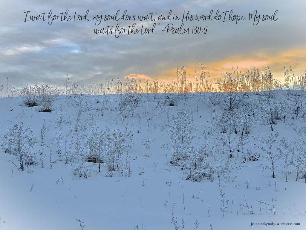 """A meme with the words, """"'I wait for the Lord, my should does wait, and in His word do I hope. My soul waits for the Lord.' ~Psalm 130:5"""" on a backdrop of a wintry hill with the sun reflecting on clouds above"""