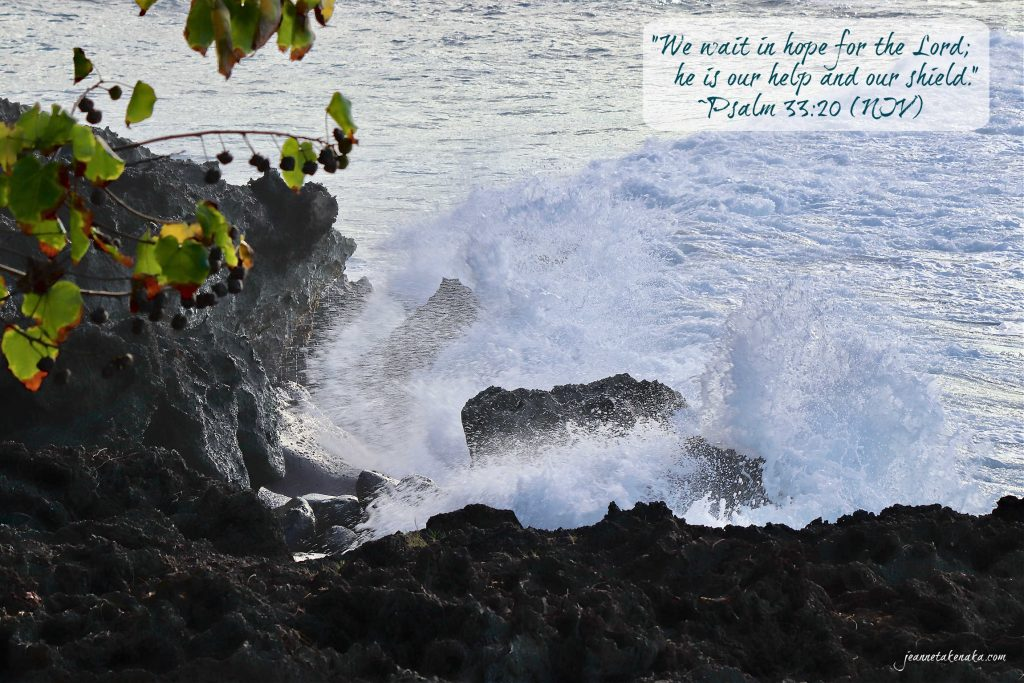 """Meme with the words, """"We wait in hope for the Lord; He is our help and our shield."""" Psalm 33:20 (NIV) on a backdrop of ocean waves crashing into rocks near the shore"""