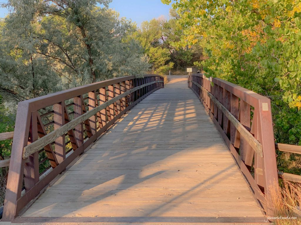 Image of a bridge, a reminder of how sometimes waiting times and anticipating outcomes is bridged by faith and truth