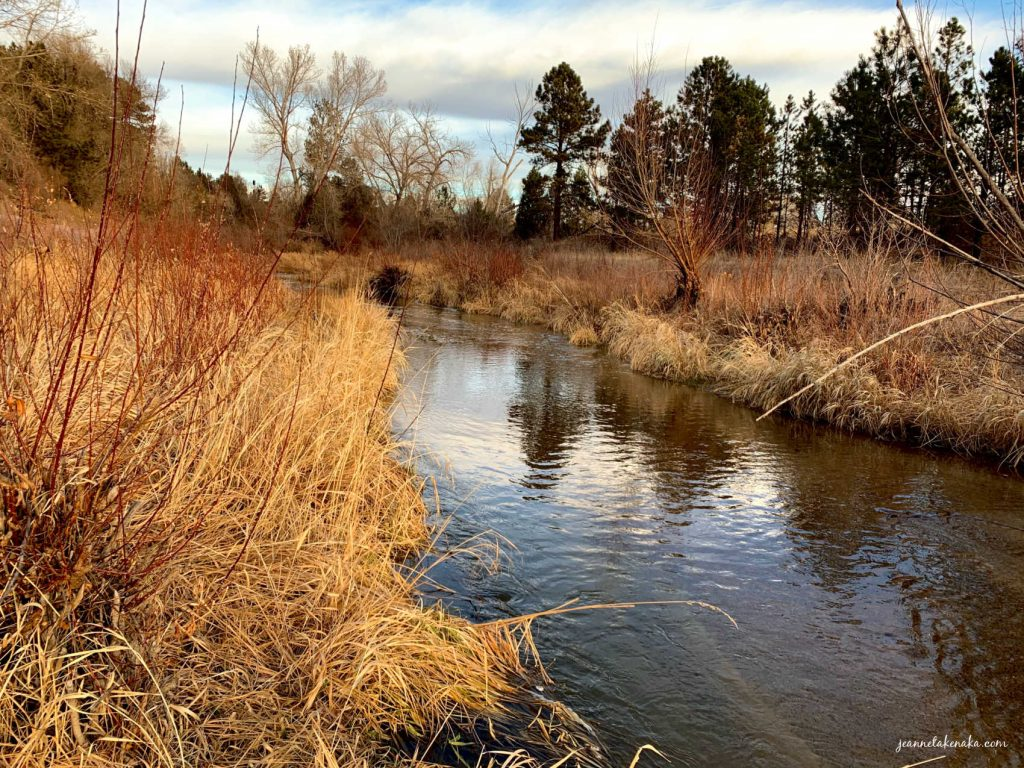 A creek bordered by brown grasses and reflecting the world around it. a visual to remind readers how it may have been for Elijah dwelling by a river when he was burned out