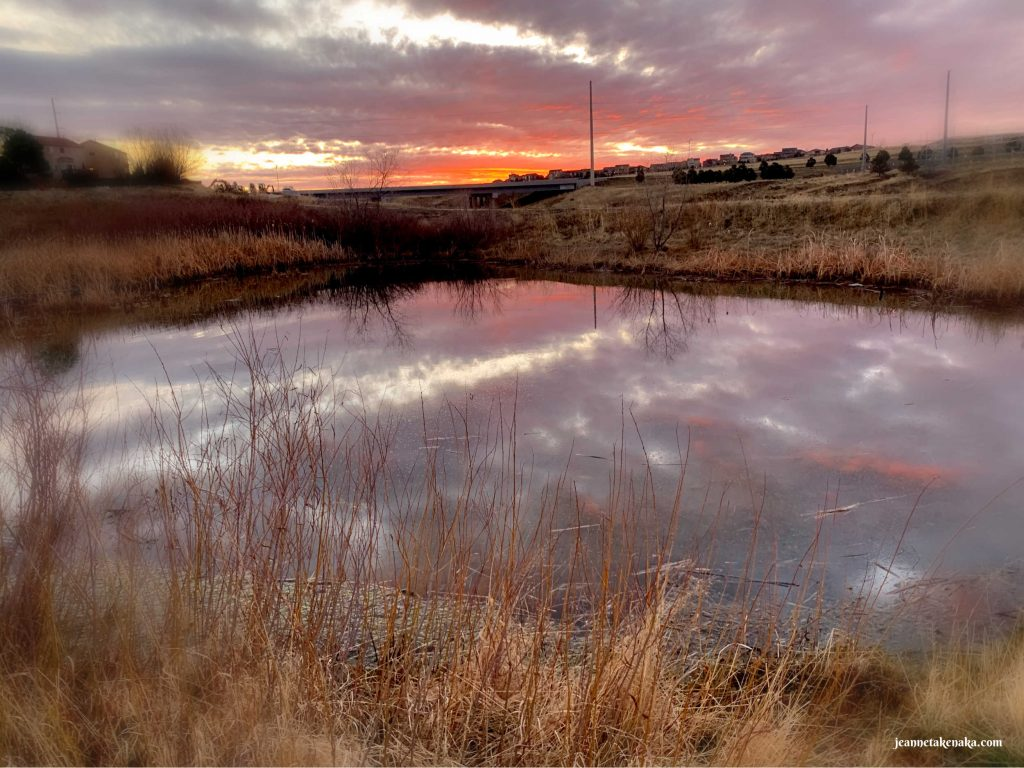 A still pond reflecting a sunrise sky . . . visual for how beauty is around us, even when we're burned out. We only have to look
