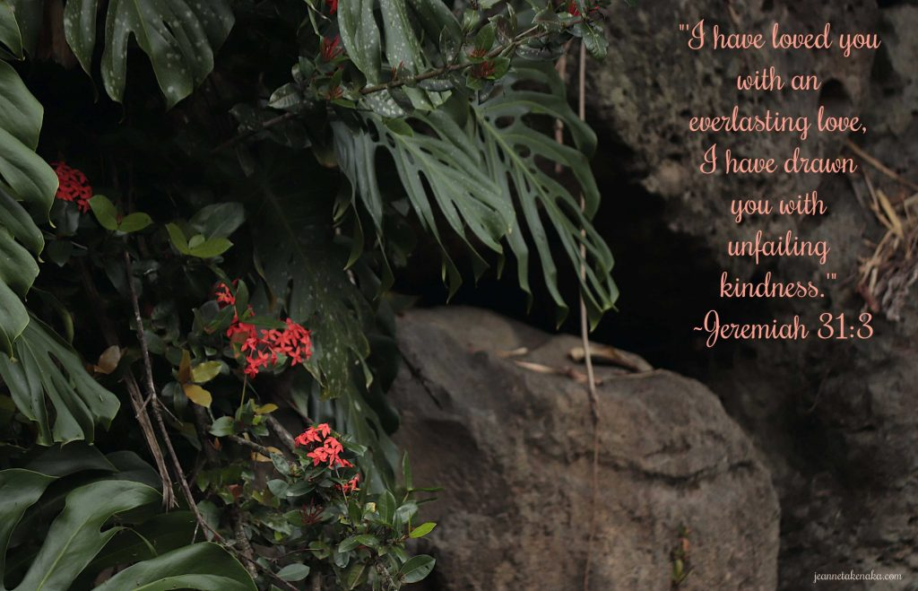 """A meme with the words: """"I have loved you with an everlasting love. I have drawn you with unfailing kindness. Jeremiah 31:3"""" on a backdrop of small red flowers growing in a shadowy cleft, a reminder that God's love creates beauty in dark places"""