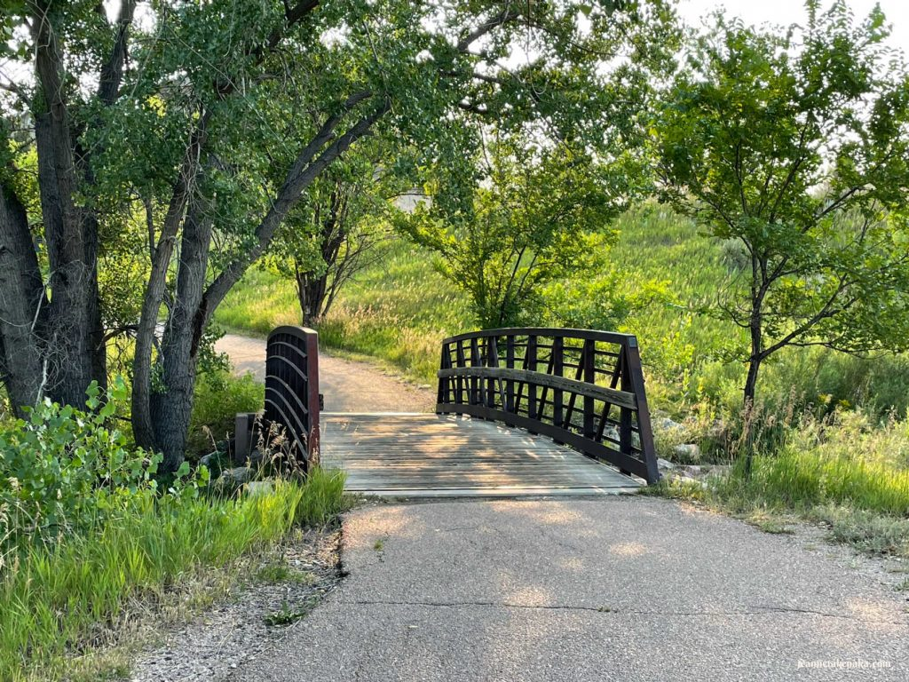 Bridge on a sunny path . . . navigating life changes brings us over bridges