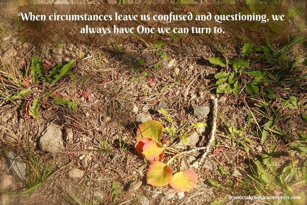 """Meme that says: """"When circumstances leave us confused and questioning, we always have One we can turn to"""" on a backdrop of fallen leaves on a stick"""