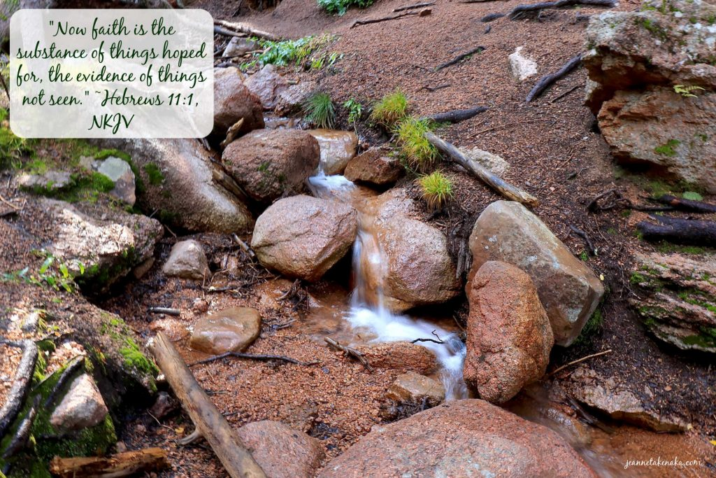 """A meme with the words, """"Now faith is the substance of things hoped for, the evidence of things not seen."""" ~Hebrews 11:1 on a backdrop of rocks and a small waterfall."""